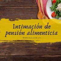 Intimación de pago de pensión alimenticia atrasada