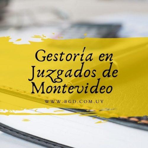 Gestoría en Juzgado de Montevideo